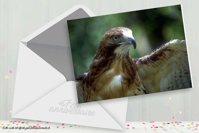 Carte anniversaire Aigle pour souhaiter un joyeux anniversaire à votre ami