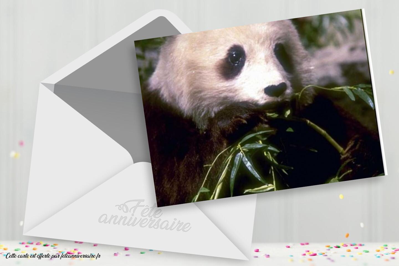 Carte anniversaire avec panda