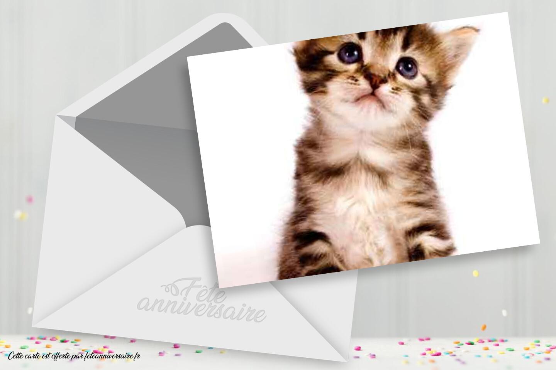 Carte Anniversaire Chaton A Imprimer Carte Gratuite Carte Chat