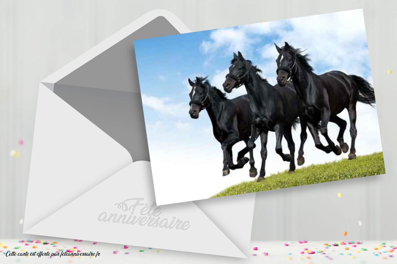 Carte Anniversaire Gratuite Chevaux Carte Gratuite Carte Chevaux