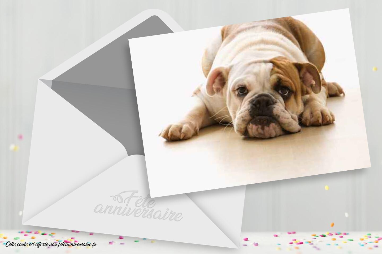 Carte Anniversaire Gratuite Chien Carte Virtuelle Gratuite