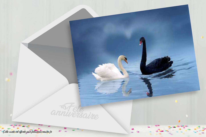 Carte d'amour avec des cygnes - Carte d'amour gratuite