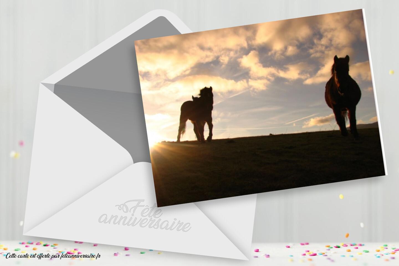 Carte d'anniversaire chevaux