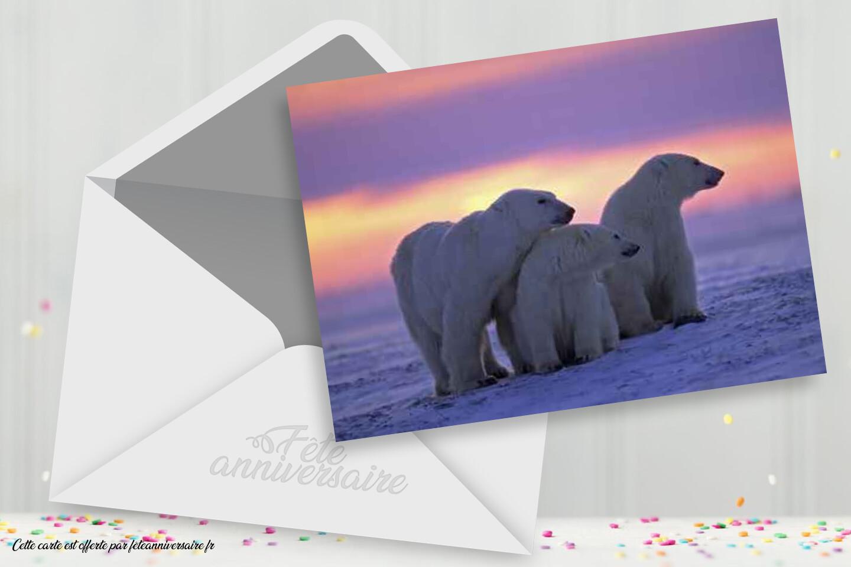 Carte d'anniversaire ours polaire