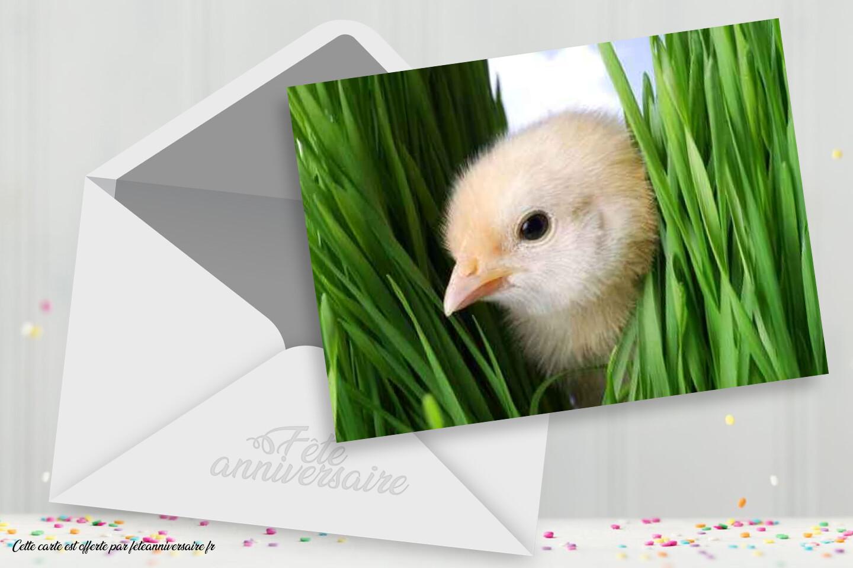 Carte Fête de Pâques - cartes gratuites