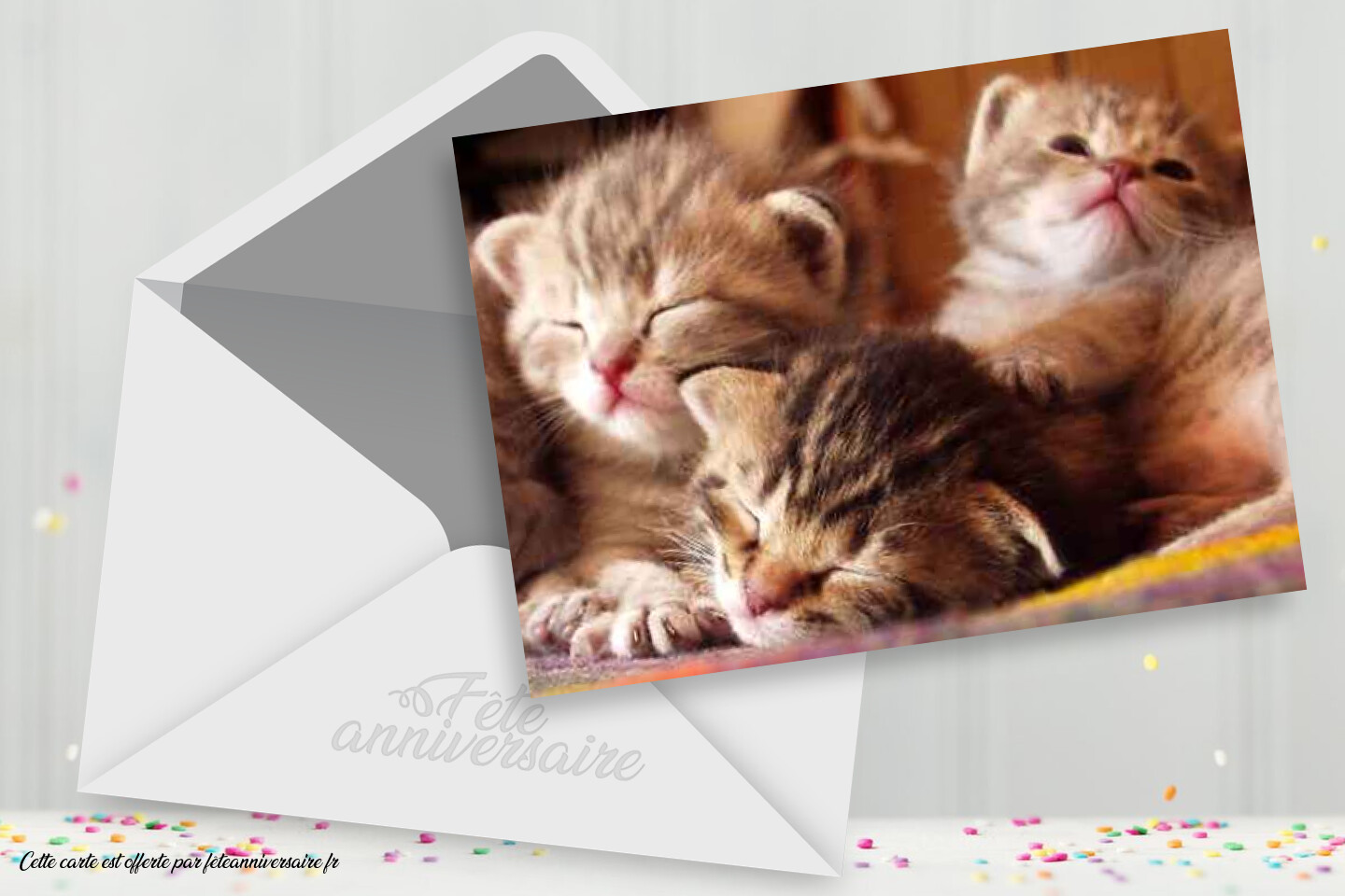 Carte Virtuelle Anniversaire Chatons Carte Gratuite Carte Chat