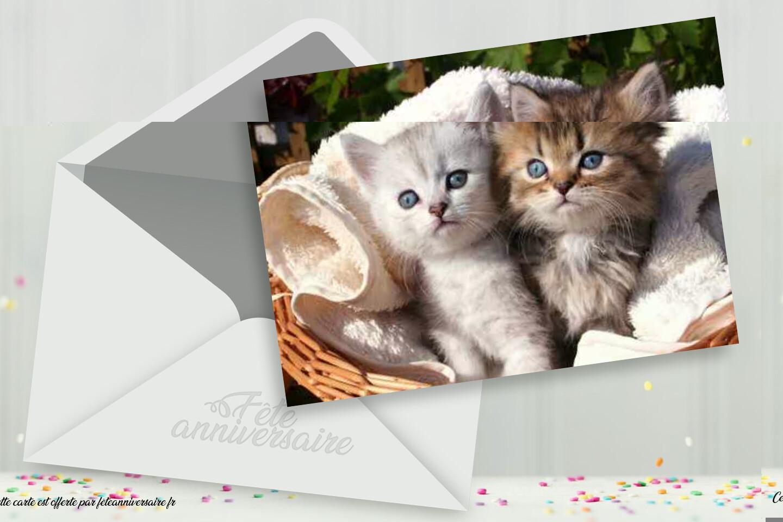 Carte virtuelle gratuit chat