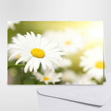 Carte Anniversaire Avec Des Fleurs Cartes Virtuelles Gratuites Fleuries