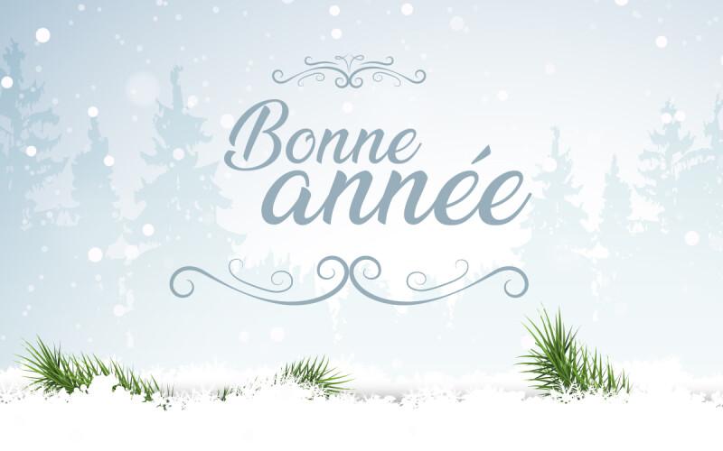 Texte de Bonne Année, pour souhaiter une bonne année !