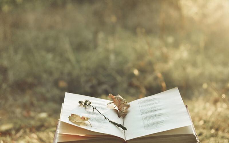 Poèmes de fête : Des centaines de poèmes pour souhaiter à vos proches toutes les occasions
